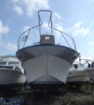 repaired-bow-fiberglass-like-new-professional-repair